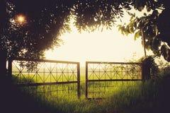 Ośniedziała brama w mgle fotografia stock