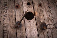 Ośniedziała kępka dołączająca w drewnie Obrazy Stock