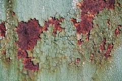 Ośniedziała metal powierzchnia z krakingową zieloną farbą, abstrakcjonistyczna ośniedziała metal tekstura, ośniedziały metalu tło Fotografia Stock