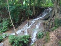 Ośniedziała puszka ustawia na górze niektóre bambusowych słupów, Fotografia Royalty Free