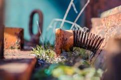 ośniedziała wiosna maszyna z roślinami Obraz Stock