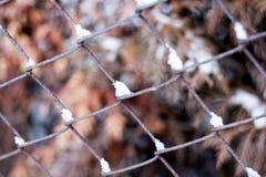 Ośniedziały łańcuszkowego połączenia żelaza ogrodzenie w zimie Obrazy Stock