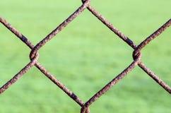 Ośniedziały Łańcuszkowego połączenia ogrodzenie Fotografia Royalty Free
