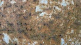 Ośniedziały żelaza prześcieradło stosowny dla używa jako textured tło zdjęcie stock