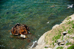 Ośniedziały żelazo w zielonym morzu zdjęcia royalty free