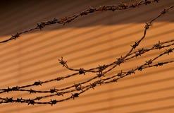 Ośniedziały barbed pisanie na brown tle. Zdjęcie Royalty Free