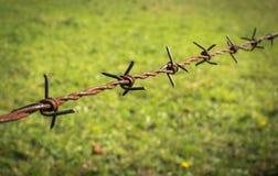Ośniedziały drutu kolczastego ogrodzenie Zdjęcie Royalty Free