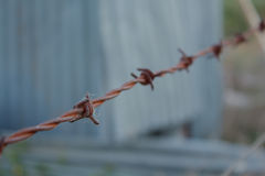 Ośniedziały drutu kolczastego ogrodzenie z pajęczynami & Zamazującym tłem Popielatym & Zielonym Zdjęcia Stock
