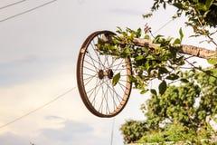 Ośniedziały rowerowy koło bez gumy, rocznika roweru koło zdjęcie royalty free