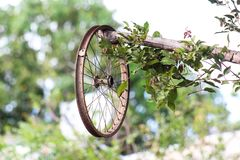 Ośniedziały rowerowy koło bez gumy, rocznika roweru koło zdjęcia royalty free