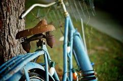Ośniedziały Stary Błękitny bicykl fotografia royalty free