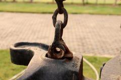 Ośniedziały Sworzniowy typ Kotwicowe szakle, haczyk na łańcuchu, wspinaczkowy carabiner na zieleń ogródzie zdjęcie stock