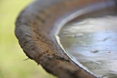 Ośniedziały trzcina cukrowa czajnik Obrazy Stock