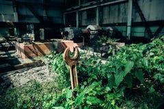 Ośniedziały wyrwanie wtykający w garnku w warsztacie ampuła porzucał fabrykę Fotografia Stock