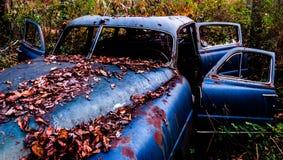 Ośniedziały, zaniechany samochód zakrywający w spadać liściach, Zdjęcie Royalty Free