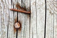 Ośniedziali gwoździe w starym krakingowym drewnie Obraz Stock
