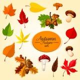 O ícone da estação do outono ajustou-se com folha e cogumelo Foto de Stock Royalty Free