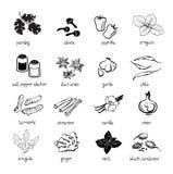 O ícone da Web ajustou - especiarias, condimentos e ervas Fotografia de Stock
