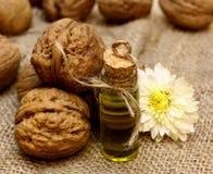 O óleo cosmético dos TERMAS naturais das nozes nuts e o outono florescem Imagem de Stock Royalty Free