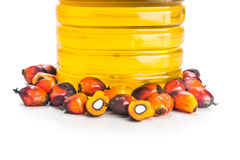O óleo de palma refinado na garrafa com a palma de óleo fresca frutifica foto de stock