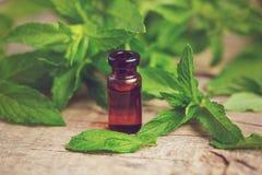 O óleo essencial da hortelã natural em uma garrafa de vidro com minuto fresco sae em um fundo de madeira Fotografia de Stock Royalty Free