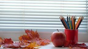 Ołówki na windowsill Zdjęcie Stock