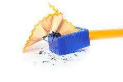 ołówkowy ostrzenie Fotografia Stock