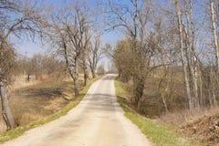 o άνεμοι εθνικών οδών μεταξύ των δέντρων στοκ εικόνα με δικαίωμα ελεύθερης χρήσης