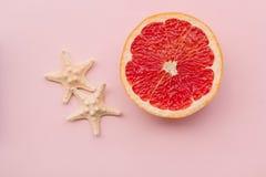 o Τροπικό φρέσκο θερινό σύνολο Σχέδιο μόδας Εσπεριδοειδή φρούτων Γκρέιπφρουτ Φωτεινό χρώμα Δημιουργική τέχνη Ελάχιστος Μόδα τοπ V στοκ εικόνα