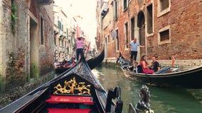 o Июнь 2019 E Взгляд большого канала в Венеции, Италии Gondoliers на гондолах сток-видео