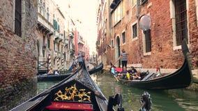 o Июнь 2019 E Взгляд канала в Венеции, Италии сток-видео