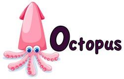 字母表动物o章鱼 图库摄影