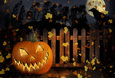 Счастливый Джек-O-фонарик хеллоуина Стоковое фото RF