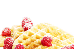 O açúcar cobriu framboesas em waffles Fotografia de Stock Royalty Free
