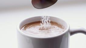 O açúcar derramou no café vídeos de arquivo