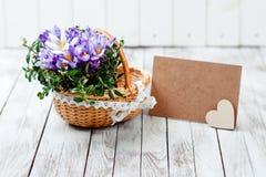 O açafrão bonito floresce em uma cesta perto do cartão vazio para seu texto no fundo de madeira Fotos de Stock