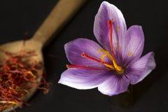 O açafrão datilografa dentro uma flor da colher e do açafrão em um backgroun preto Imagem de Stock Royalty Free