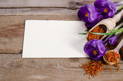 O açafrão floresce com o cartão vazio para seu texto Fotografia de Stock Royalty Free