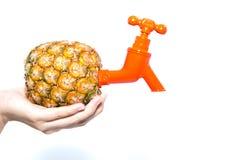 O abacaxi conecta uma torneira Foto de Stock