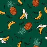O abacaxi e a banana retros bonitos entregam o esboço tirado, greetin Fotografia de Stock Royalty Free