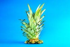 O abacaxi eliminado sae no fundo ciano Arte do conceito Fundo mínimo do surrealismo Conceito do verão imagens de stock royalty free