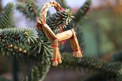 O abeto ramifica com decorações da palha em uma obscuridade - fundo verde Fundo do Natal Foco seletivo O lugar para Imagem de Stock