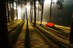 O acampamento Imagem de Stock
