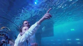 O adolescente com paizinho admira a vida marinha no túnel de vidro do aquário no vídeo da metragem do estoque da alameda de Dubai video estoque