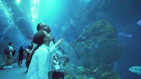 O adolescente com paizinho admira a vida marinha no túnel de vidro do aquário no vídeo da metragem do estoque da alameda de Dubai vídeos de arquivo