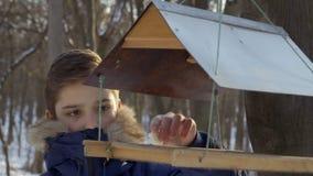 O adolescente pôs a parte de pão pequena em alimentadores do pássaro vídeos de arquivo