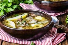 O ajiaco latinamerican chileno tradicional da sopa da carne serviu na placa da argila Fotos de Stock Royalty Free