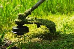 O ajustador do gramado da gasolina sega a grama verde suculenta Foto de Stock Royalty Free