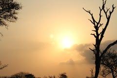 O ajuste do sol em África Fotos de Stock Royalty Free