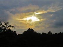 O ajuste Sun afunda-se nas árvores Fotografia de Stock Royalty Free